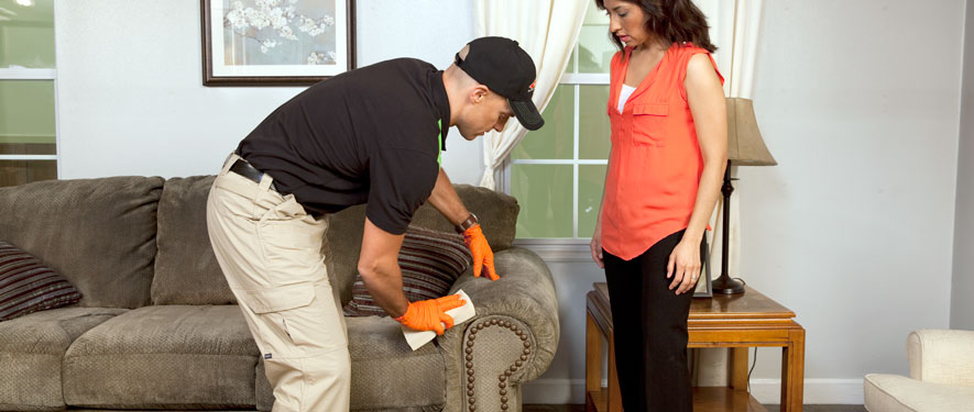 Clarkesville, GA carpet upholstery cleaning